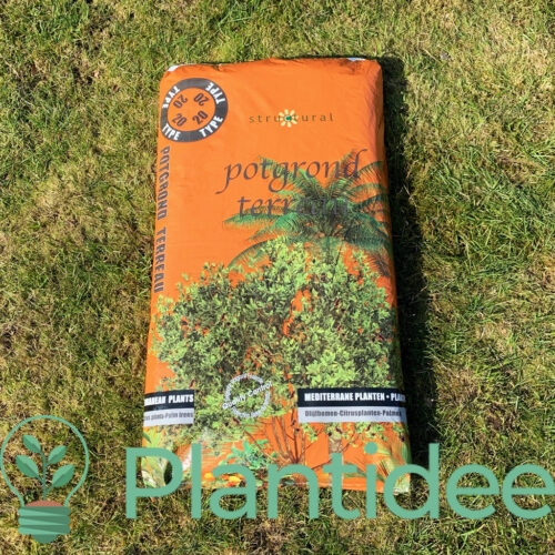 Plantidee - producten - Potgrond mediterrane planten